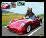 Ayicik yolda 'bear on road' by halil-art