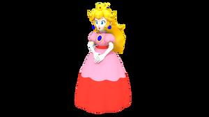 Princess Peach Toadstool - MKA Case Art 01