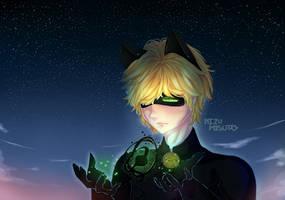 Chat Noir- Miraculous Ladybug Fanart