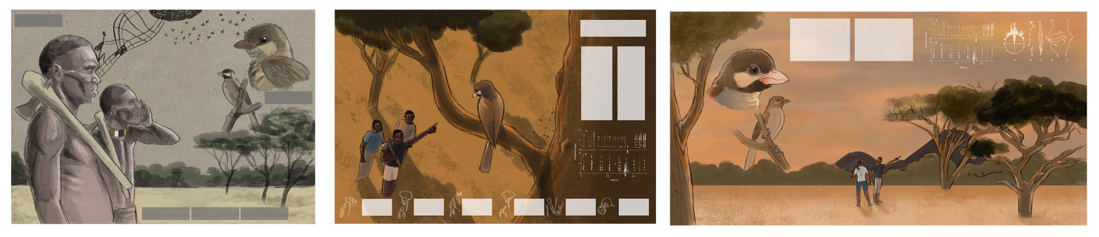 Greater Honeyguide layout concepts