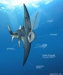 AURORA: Greater Winghead