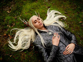 Thranduil Cosplay - One with the forest