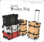 Trolley suit case bag MMD Download