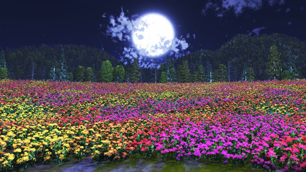 MMD STAGE Night flower field DOWNLOAD by Hack-Girl