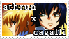 athrun x cagalli by meimei-stamps