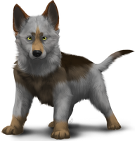 Wolf pup adoptable 20pts - CLOSED