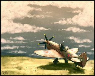 Spitfire by McGibs