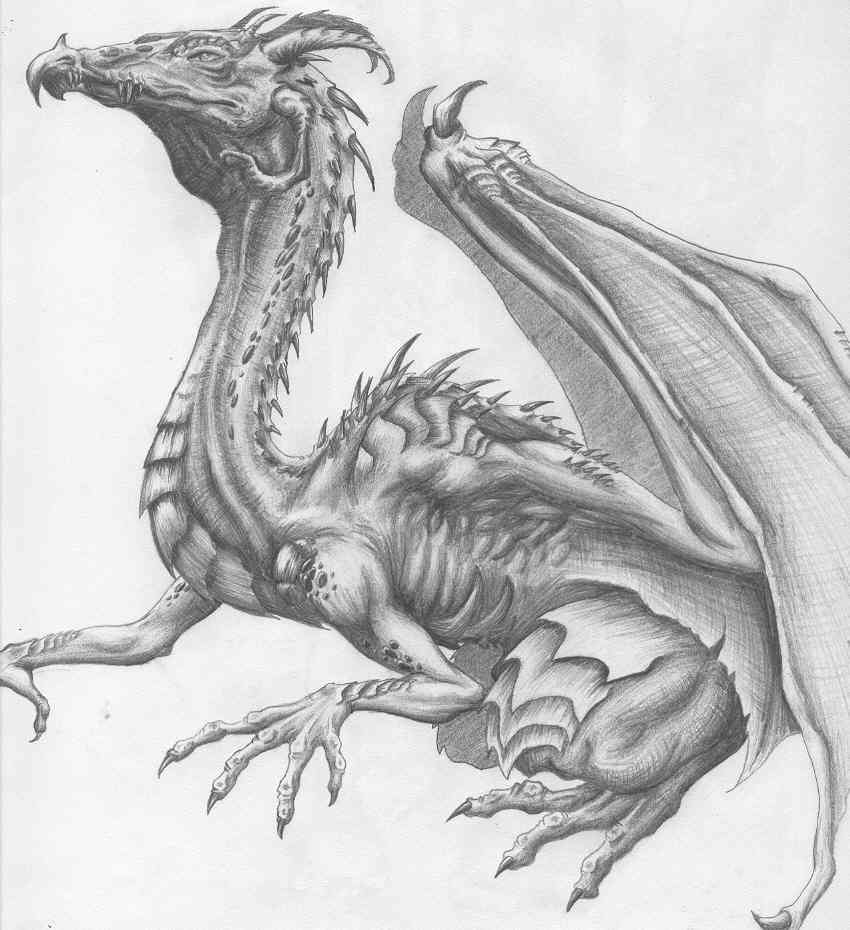Pencil dragon sketch by pyroemochick