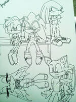 The Sonic Crew: Just An Ordinary Day in the Park by jazzy-bizzle