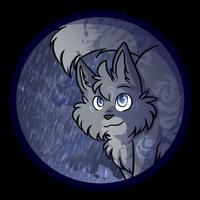 Stormcatcher    Tracker by Kimberwick