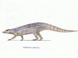 Stagonolepis (aetosaur) by Pappasaurus