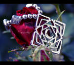 .Vampire Knight - Sweet Dream. by cherririi
