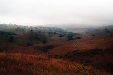 Misty Mountain Hop by Vividlight