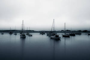 Morning Calm by Vividlight
