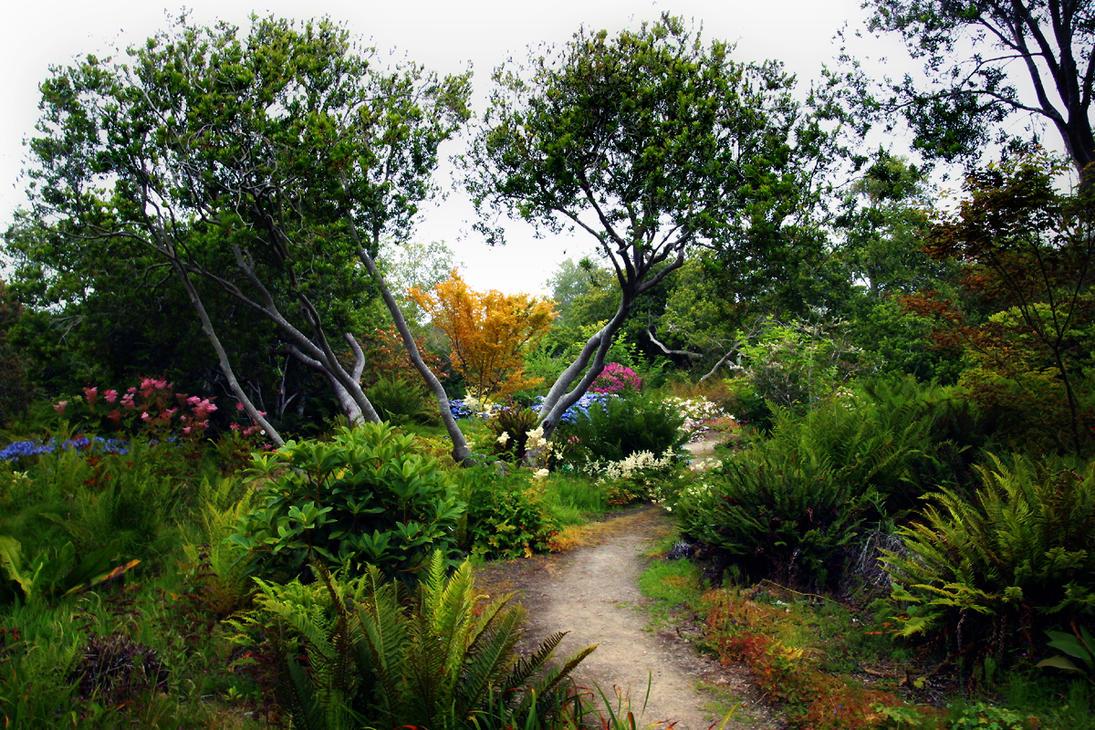 Enchanted Garden by Vividlight