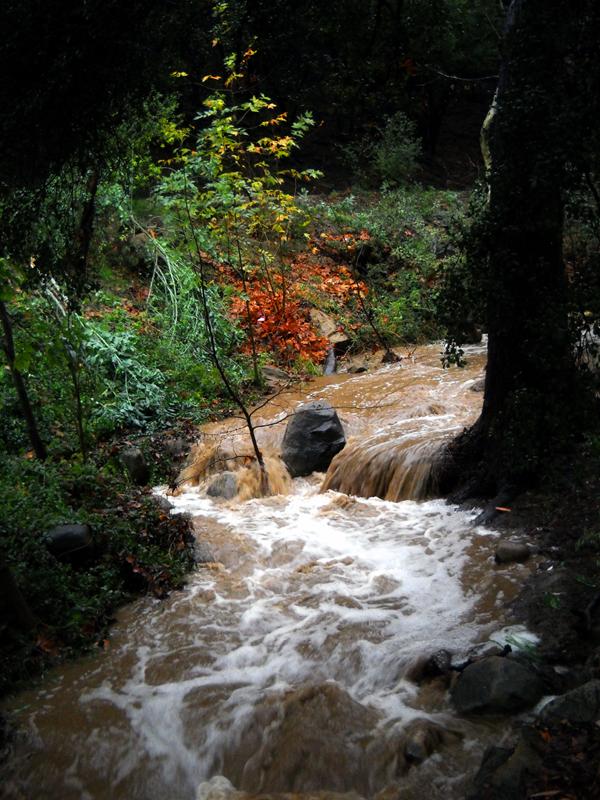 A River Runs Through It by Vividlight