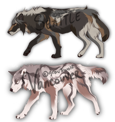 $25 Paypal Wolf Adopts CLOSED