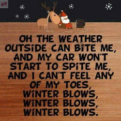 My feelings about Winter by WerecatqueenNic