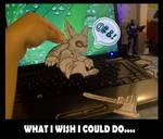 What I wish