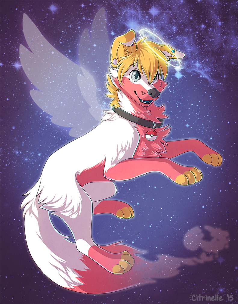 A new star in the sky by RupeeCat
