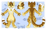 Citri Fursuit ref