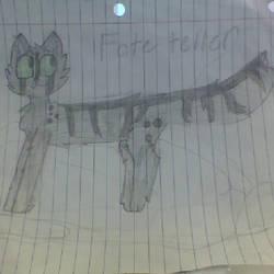 Fate teller, my warrior cat oc by Maplefeather105