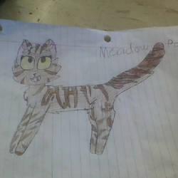 Warrior cat oc Meadow paw by Maplefeather105