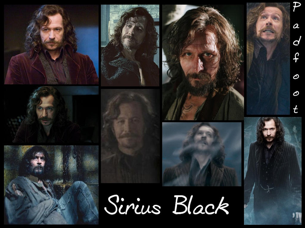 Marauder Sirius Black- Padfoot by Alwaysss-Sslytherin on ...