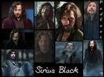 Marauder Sirius Black- Padfoot