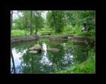The Bran castle lake