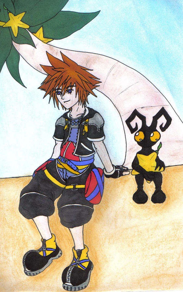 Sora and the shadow by Aureawolf