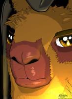 Brad the Llama Monk by recurring
