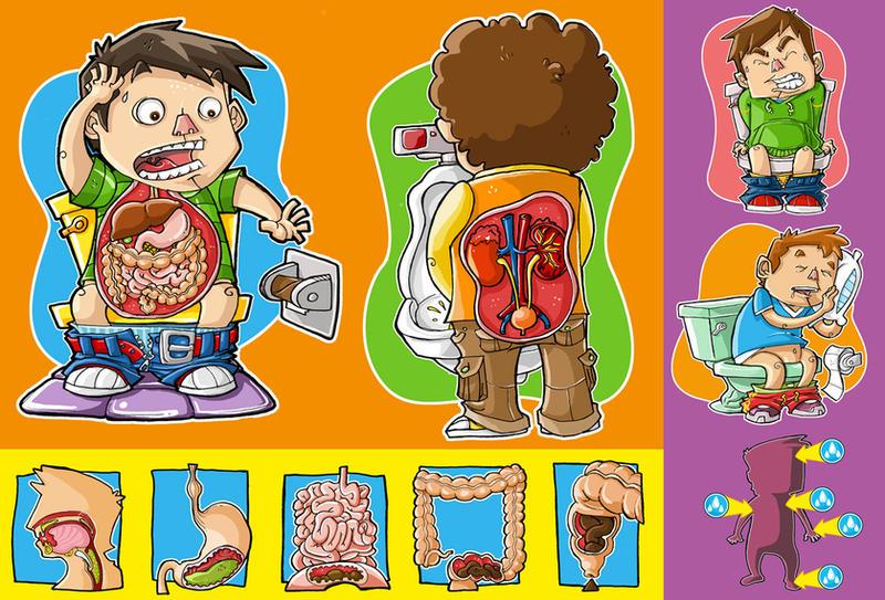 Sistema Digestivo Para Ninos