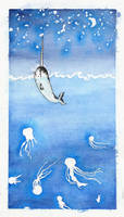 The Narwhal and the Stars I