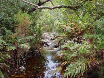 Mountain stream by Lomeril