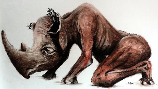 Rhinhom by MornKC