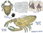 Carcinization Spec Prompt - Carcinized Eurypterid