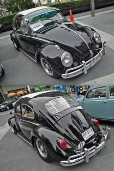Black Old Bug