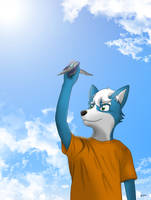 One day I'll fly by gupa507