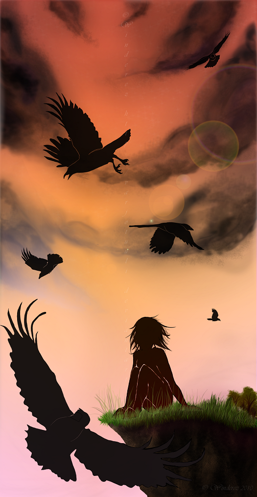 Birds by Varjotuuli