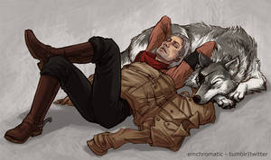 Catnap and Dognap