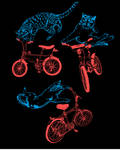 CATS. ON BIKES.