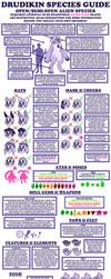 NEW Drudikin Species Guide by StarryTiger