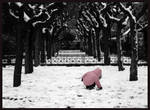 SNOW by thalia29