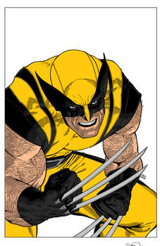 Wolverine 305 Cover By Markmorales