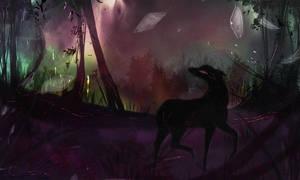 Shadowfern: Nightshade