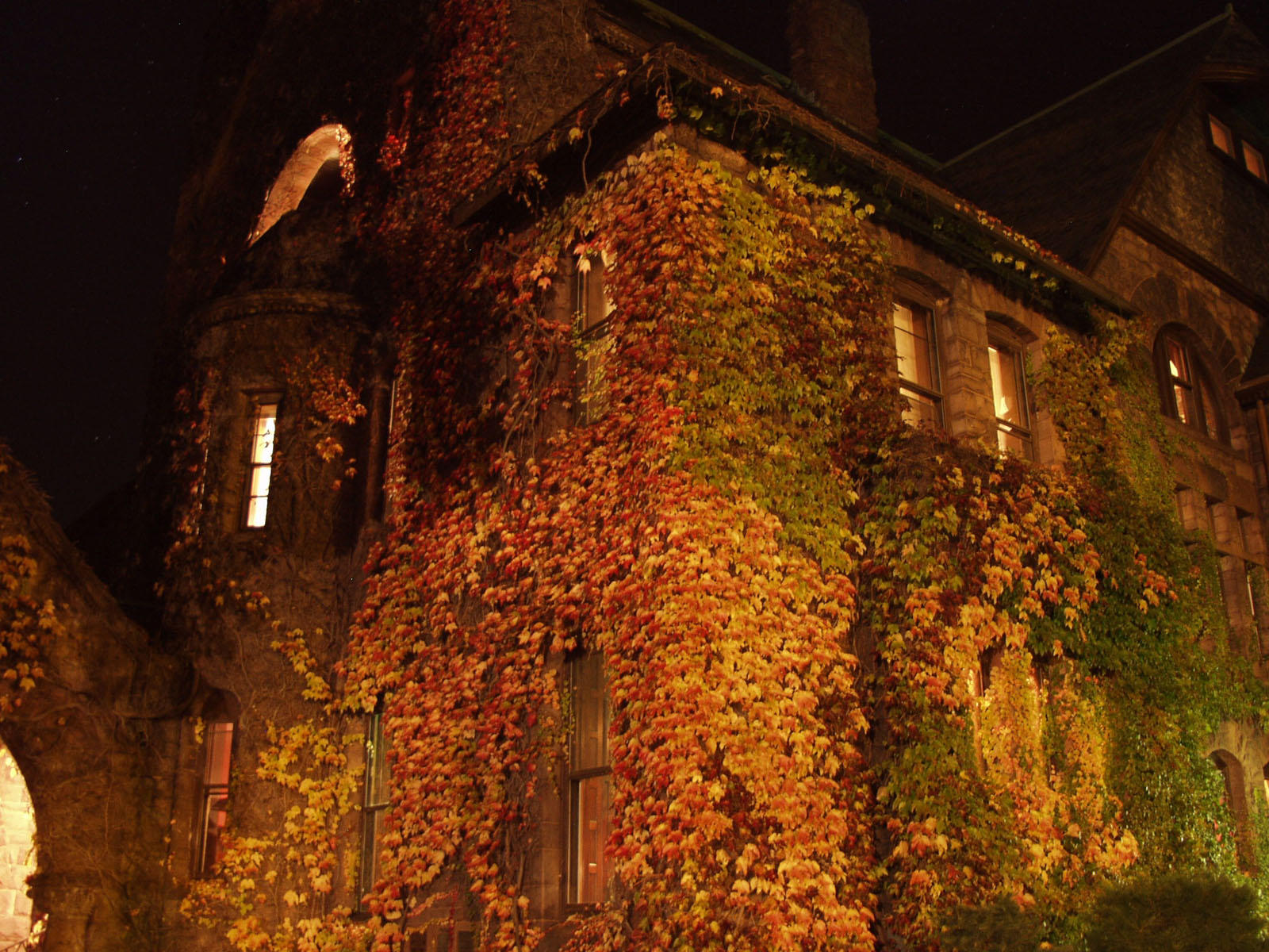 Ivy Castle by supaspoida
