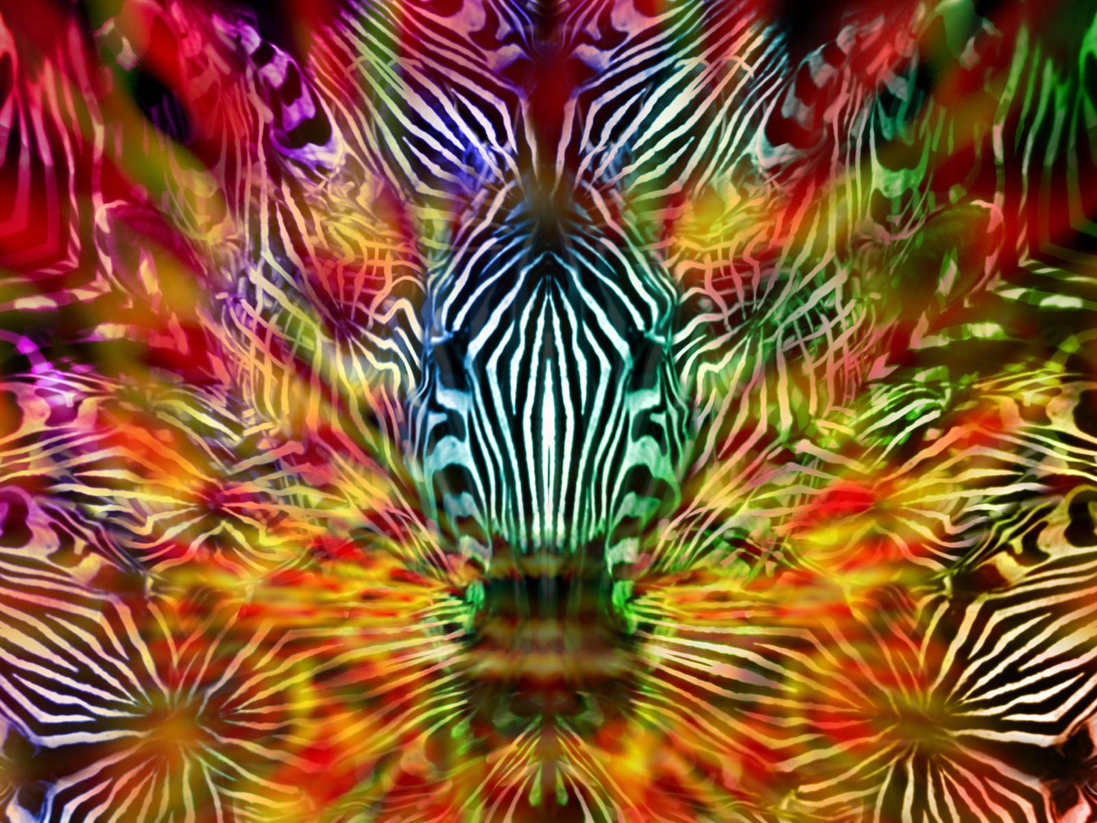 Forest Spirit by supaspoida