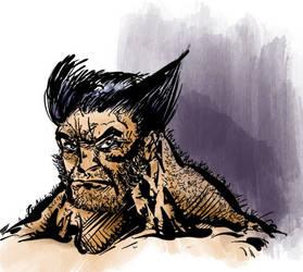 Wolverine by mcd91