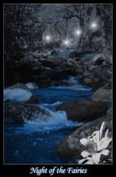 Night of the Fairies